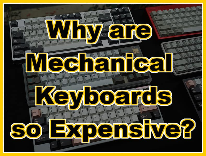 Why Are Mechanical Keyboards so Expensive